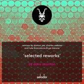 Selected Reworks fra Dave Seaman