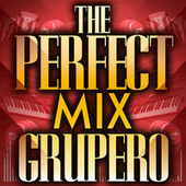 The Perfect Mix - Grupero by Various Artists