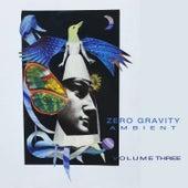 Zero Gravity Ambient: Vol. 3 von Various Artists