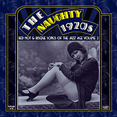The Naughty 1920s: Red Hot & Risque Songs Of The Jazz Age Volume 2 by Various Artists