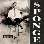 Lavatorium by Sponge