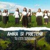 Tu Esti Suveran by Amira