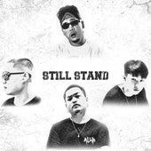 Still Stand von Allin