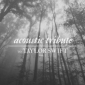 Acoustic Tribute to Taylor Swift, Vol. 3 (Instrumental) by Guitar Tribute Players