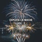 Explota La Noche Vol. 1 von Various Artists