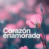 Corazón Enamorado de Various Artists