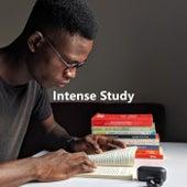 Intense Study de Various Artists