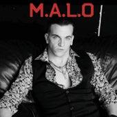 Hermosa y Increible by Malo