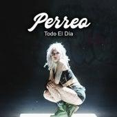 Perreo Todo El Día von Various Artists