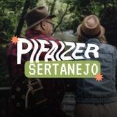 Pifaizer Sertanejo de Various Artists