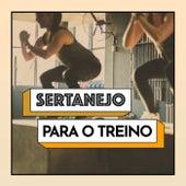 Sertanejo Para o Treino de Various Artists