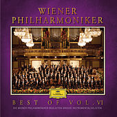 Best of Wiener Philharmoniker Vol. VI von Various Artists