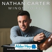 Wings To Fly de Nathan Carter