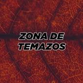 Zona de Temazos von Various Artists