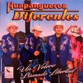 Un Velero Llamado Libertad de Huapangueros Diferentes Oficial