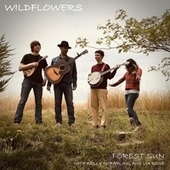 Wildflowers (feat. Kelly McFarling & Lia Rose) by Forest Sun