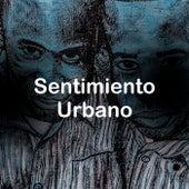 Sentimiento Urbano von Various Artists