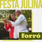 Festa Julina Forró de Various Artists