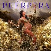 Puérpera by Lila