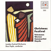 Christmas Festival von Ross Pople