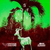 Drinkee (Vintage Culture & John Summit Remix) de Sofi Tukker & Pabllo Vittar