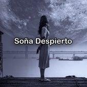 Soña Despierto von Various Artists
