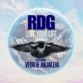 Live Your Life (feat. Vedo & Anjaleia) (Remix) by Rdg