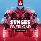 Senses Overload (VIP Mix) de Teminite