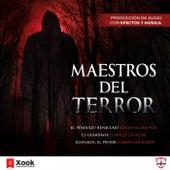Maestros del Terror (El Pozo y el Péndulo / Renacuajo / el Guardavías / Schalken, el Pintor) de Charles Dickens
