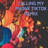 Calling My Phone TikTok Remix by DJ Kool