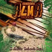 El Alacran Tumbando Caña von Marimba Alma Tropical