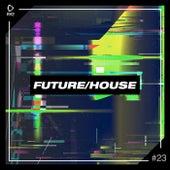 Future/House #23 von Various Artists