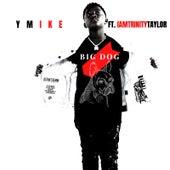 Big Dog by Ymike