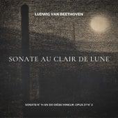 Beethoven: Sonate au Clair de Lune (Sonate in C-Sharp Minor, Op. 27, 2: I. Adagio sostenuto) de Pierre Henri Martinot
