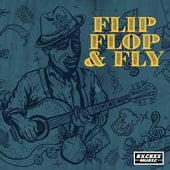 Flip Flop & Fly de Various Artists