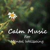 Calm Music For Mental Wellbeing von Antonio Paravarno