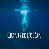 Chants de l'océan: Belles vagues océaniques pour le sommeil, la détente et le spa by Zen ambiance d'eau calme