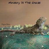 Ministry of the Chase de Digital Bobo
