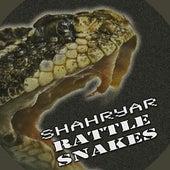 Rattle Snakes by Shahryar