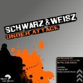 Under Attack by Schwarz