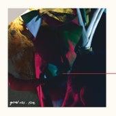 Flore - Deluxe version de Gabriel Rios