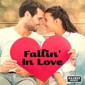 Fallin' In Love de Various Artists