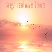 Seagulls and Waves 2 Hours by Color Noise Therapy