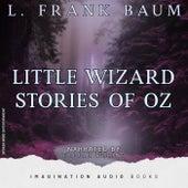 Little Wizard Stories Of Oz de Imagination Audio Books