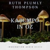 Kabumpo In Oz de Imagination Audio Books