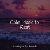 Calm Music to Rest by Lullabies for Deep Meditation