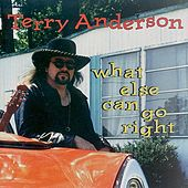 What Else Can Go Right by Terry Anderson