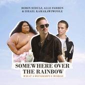 Somewhere Over the Rainbow / What a Wonderful World von Robin Schulz