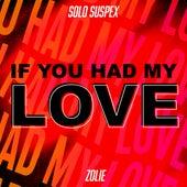 If You Had My Love (feat. Zolie) de Solo Suspex
