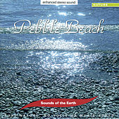 Pebble Beach de Sounds Of The Earth